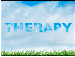 Therapy with professional counselor Steve B. Reed