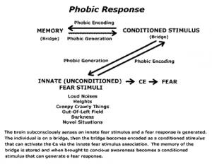 How Phobias Form