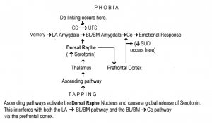 Phobia desensitization