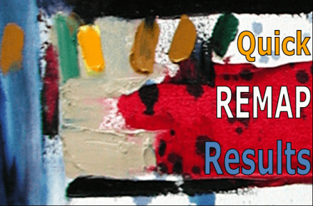 Quick REMAP research experiment results