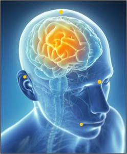 REMAP therapy calms the sympathetic nervous system